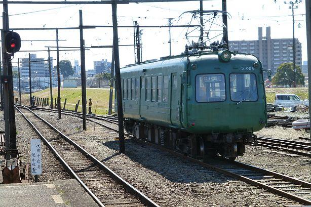 aogaeru_614c.jpg