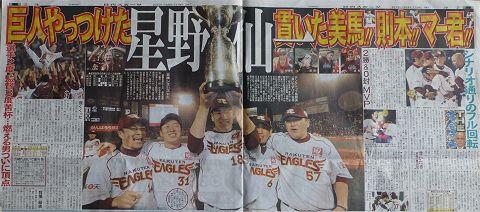 eagles2013b.jpg
