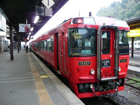 kumainhiyoshi480.jpg
