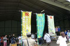 maiwai1_237.jpg