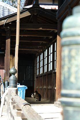 nakayama0201f.jpg