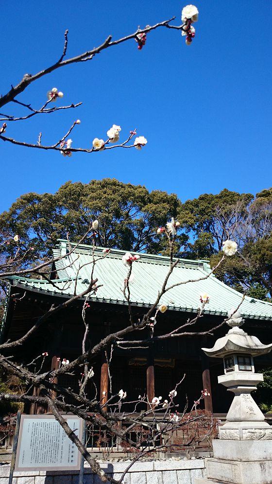 nakayama0201j.jpg