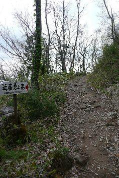 sakamichi237.jpg