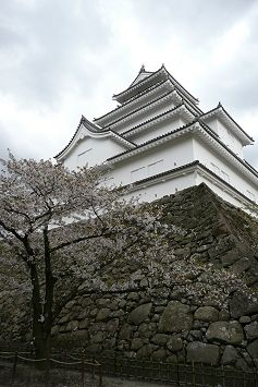 tsuru237.jpg