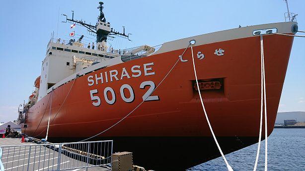 shirase614.jpg