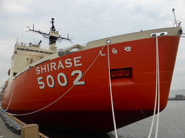 shirase614b.jpg
