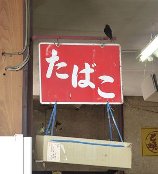 tsubame320.jpg